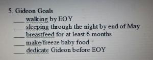 Gideon's Goals from 2013